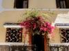 riad_entre_fleurs